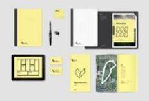 Brand & Visual Identity