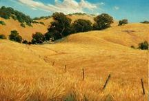 Landscapes / Beautiful and interesting landscapes in Central California and beyond