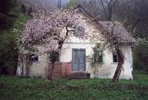A cottage dream