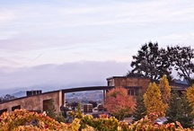 Central California Wineries / Hundreds of wineries, beautiful scenery, fantastic wine.