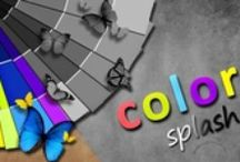 • ѕplaѕн oғ color • / Black and White with a touch of color / by Jessica