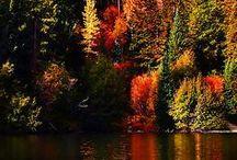 Autumns Season