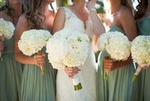 Weddings  / by Bailey Ulmer