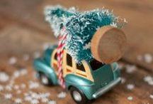 Christmas Decor / by Kerry Sheridan