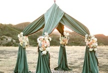 Party Ideas / by Tammy S