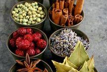 ⌘ spice trade ⌘