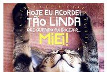 BOM DIA', BOA TARDE', BOA NOITE', BOM FERIADO', BOM DOMINGO' / ♥