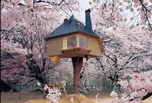 Dream Home / a house like fairytale