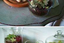 Craft Ideas / by Christine Heib