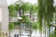 Green office