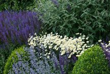 Gardens I Want / Gardening tips, landscape design, and inspiration for garden beds.