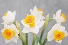 LEMONADE PAPER FLOWERS
