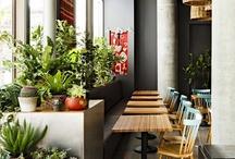 Plants / by Honeylyn Balingcasag