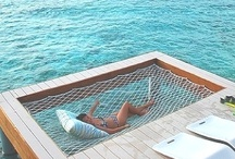 What I would like to be doing right now