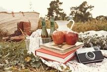 picnic/acampada