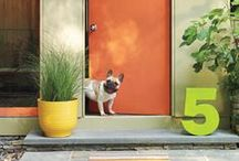 Curb Appeal / Whether you're in an apartment or house, discover new ways to make your home's exterior stand out from the rest. / by AllModern
