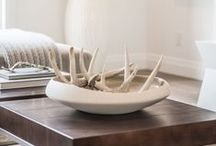 Home Accents + Decor / by AllModern