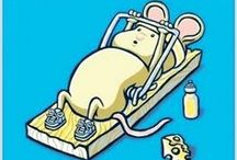 Getting Fit (or at least attempting) / by Kendra Z.