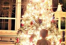 Holidays / by Judy Bonds
