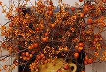 Autumn Everything