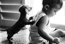 Just Precious / My collection of cute photos. Pretty much babies... and animal babies :)  / by Shirley