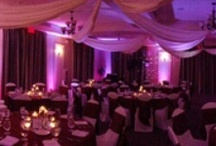 Wedding Locations in Orlando / by Elegant Entertainment