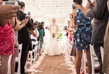 Unplugged Wedding / How to politely ask your guests to turn off their phones and cameras during your wedding ceremony.