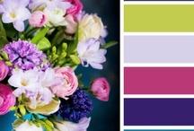 Colors / by Mandy Entwistle