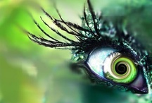 madgrfx ~ altered eyes / by Lindsey Henderson