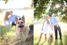 Engagement Photos / One year before the wedding in the Fall so that your engagemnet photos will match your Fall wedding.