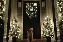 Christmas / by Karen Fan Chen