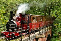 Train and Tracks / by Lisa Davis