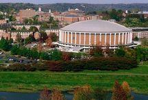 Ohio University Bobcats / by Lisa Davis