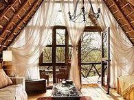 Home   Treehouses