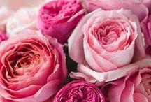 "I Love Flowers / ""God is in the details."" ~Ludwig Mies Van Der Rohe / by Julie L. Light ♥ FabulousFindsStudio"