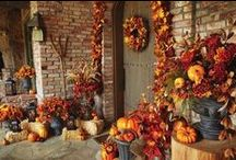 Fall into Autumn / Celebrating Fall and its holidays