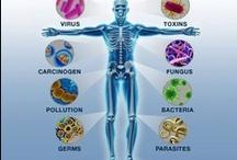 Vitamins, Minerals & Herbs / by Rebeca Manning