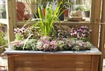 Small space garden ideas / Ideas and inspiration for small garden designs - from clever potted plant displays to beautiful and quaint garden borders, create a garden you'll love.  / by Homebase