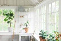 Växthus ~ Garden house