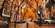 ℱᗩᒪᒪ / How much beautiful is fall?