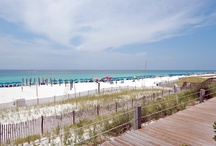"""Destin / Know as the """"World's luckiest fishing village"""", Destin truly shines with its plethora of activities for the whole family, amazing white sand beaches and the fishing, yes the fishing! Just 20 miles due south a large underwater canyon that creates an expressway of the finest sea fare, take a day charter and fill your cooler with Grouper, Snapper and Cobia galore. Once known as """"Redneck Rivera"""", Destin has grown up though the years and now rivals the French Rivera. Destin has it all!"""