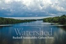 Bucknell Magazine / by Bucknell University