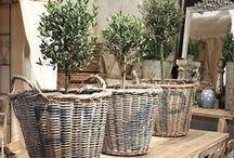baskets, bins & crates / by CandyOh