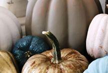 :: Fall: Halloween & Thanksgiving :: / by Nikki F