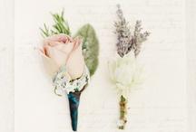 Wedding Boutonniere Inspiration / Wedding Boutonniere Inspiration / by Rachel May