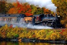 Fall in Connecticut / Fall in love with Connecticut this season – get out and explore the beautiful colors of New England fall foliage, pick the perfect pumpkin, plan an overnight stay at a charming inn or hike one of Connecticut's many trails. For more fall fun, visit www.ctvisit.com, our Facebook page at www.facebook.com/visitconnecticut and our Twitter page at www.twitter.com/ctvisit. #FallforConnecticut / by Visit Connecticut