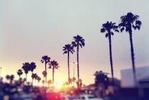 California Sunshine. / by Meghan Hawthorne