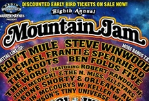 Festival Posters (2012) / Which festivals did you attend?