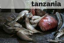 Destination: Tanzania / Destination: Travel to Tanzania