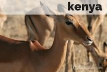 Destination: Kenya / Destination: Travel to Kenya
